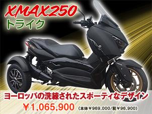 XMAX250トライク(三輪バイク)