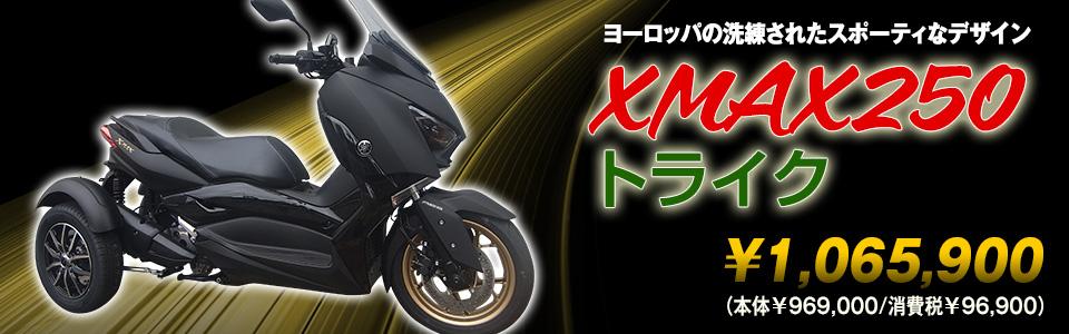XMAX250トライク